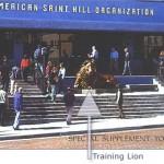 ASHO brochure (c) 2000 CSI