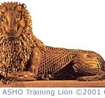 The ASHO Training Lion