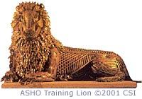 The ASHO Training Lion